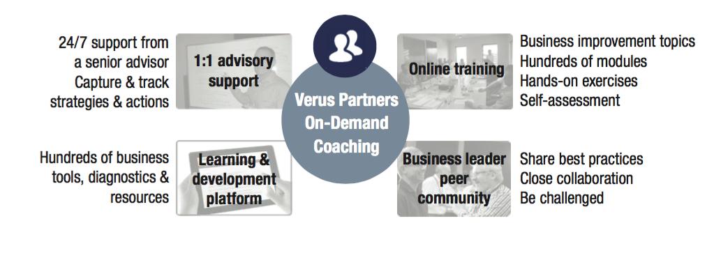Verus Partners On-Demand Coaching